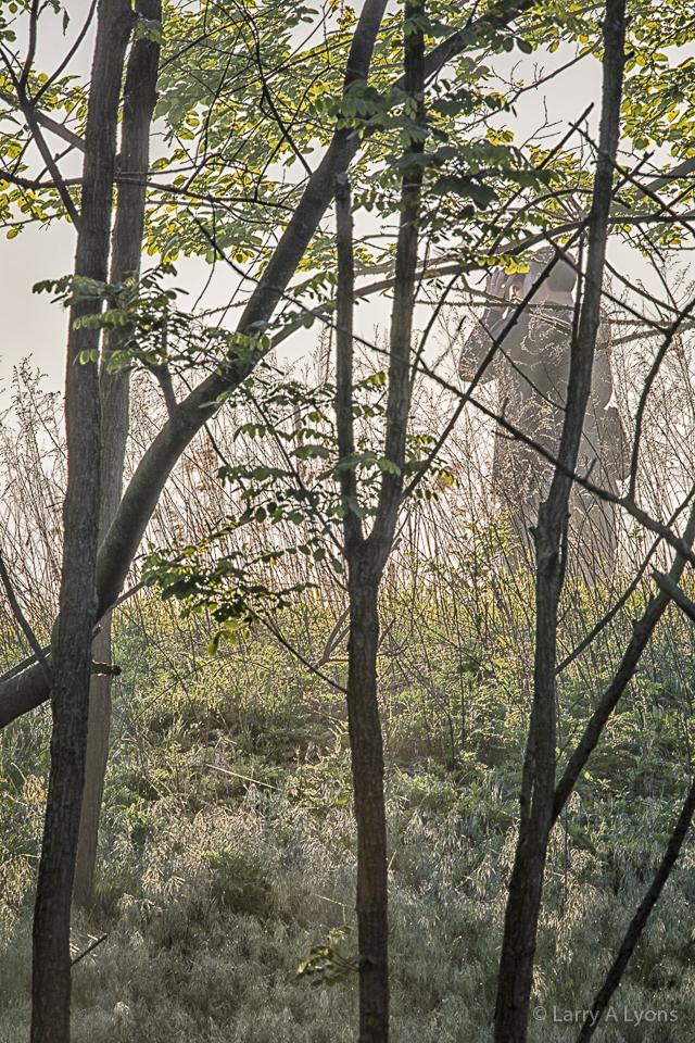 """""""A Birder' © Larry A Lyons"""