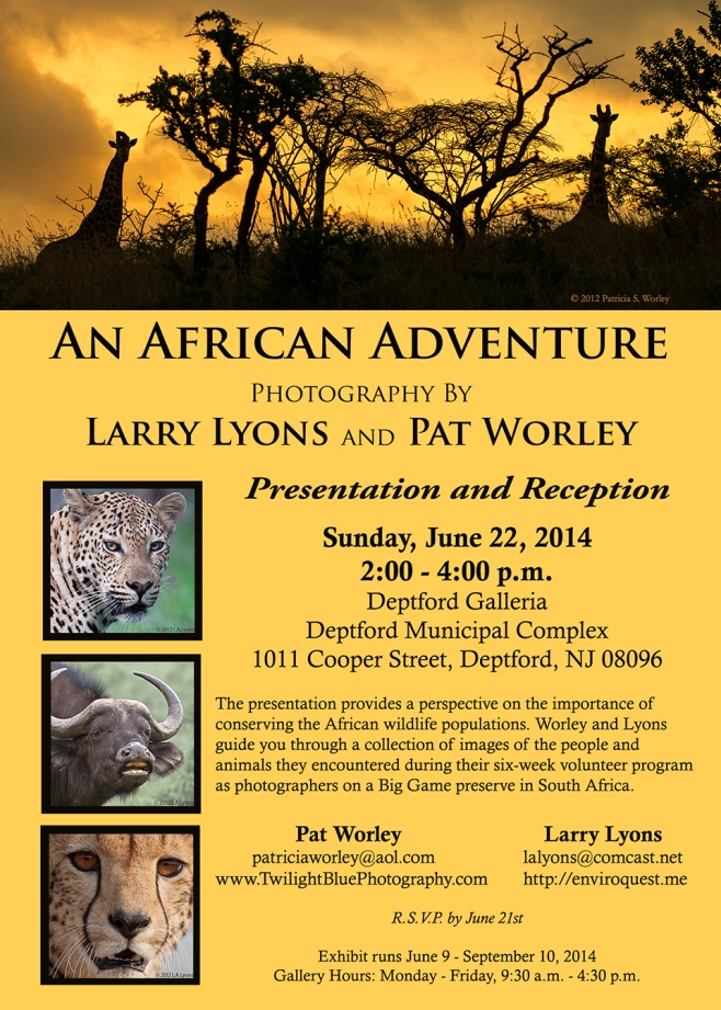 'An African Adventure Exhibit'