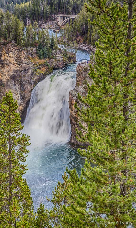 'Upper Yellowstone Falls' © Larry A Lyons